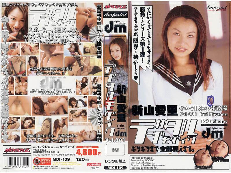 デジタルモザイク Vol.001 新山愛里