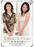 美熟女コレクション 谷村都 柿本真緒 ダウンロード