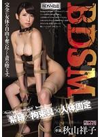 BDSM 緊縛×拘束具×人体固定 秋山祥子 ダウンロード
