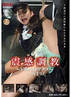 震感調教 〜Vibrateアクメ〜小西まりえ ダウンロード