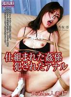 罠に堕ちた人妻17 仕組まれた姦係 犯されたアナル 香坂澪 ダウンロード