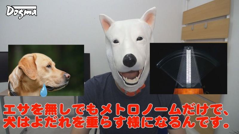 【※悪用厳禁】通電ショック洗脳実験 「パブロフの犬の定理」の電気実験を使って少女を完全にマインドコントロールする監禁術。 冬愛ことね 1枚目