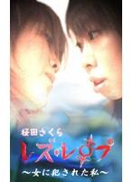 レズ・レイプ〜女に犯された私〜 Vol.3 ダウンロード