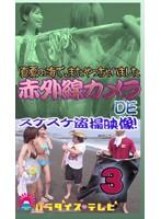 夏の海で赤外線カメラ!スケスケ盗○!(3) ダウンロード