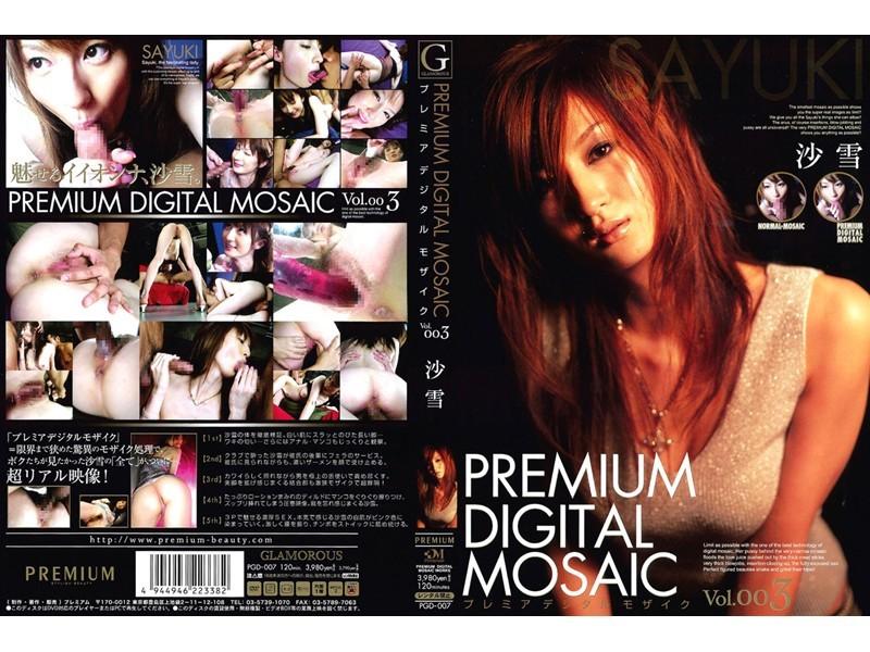 プレミアデジタルモザイク Vol.003 沙雪