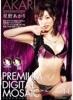 プレミアデジタルモザイク Vol.014 星野あかり ダウンロード