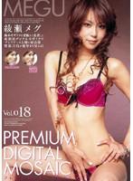 プレミアデジタルモザイク Vol.018 綾瀬メグ ダウンロード