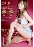 プレミアデジタルモザイク Vol.022 神谷姫 ダウンロード