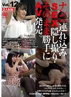ナンパ連れ込みSEX隠し撮り・そのまま勝手にAV発売。Vol.12 ダウンロード