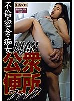 興奮!公衆便所ファック 不倫・密会・痴女 sqis00012のパッケージ画像