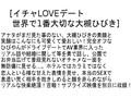 【お得セット】イチャLOVEデート 大槻ひびき 波多野結衣 通野未帆