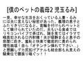 【お得セット】僕のペットの義母 児玉るみ 本田岬 桐嶋りのsample2