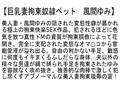 【お得セット】拘束・泥酔・義母 風間ゆみ 3作品セット