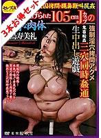 【お得セット】女因拷問 東尾真子 朝桐光