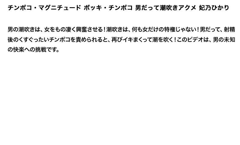 【お得セット】まとめて抜ける!! チンポコ・マグニチュード シリーズ 2 妃乃ひかり 川上ゆう 星野あかり2