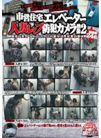 市営住宅エレベーター人妻レイプ防犯カメラ映像2