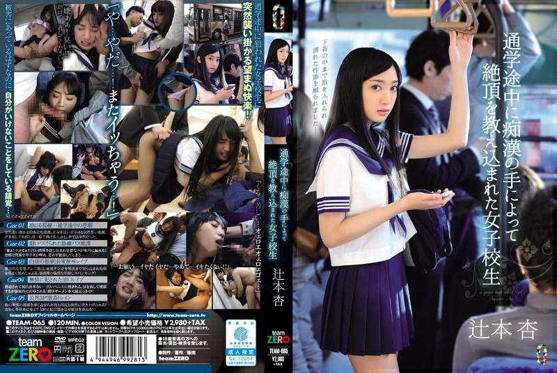 通学途中に痴漢の手によって絶頂を教え込まれた女子校生 辻本杏
