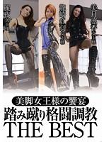 美脚女王様の饗宴踏み蹴り格闘調教 [TPLS-017]