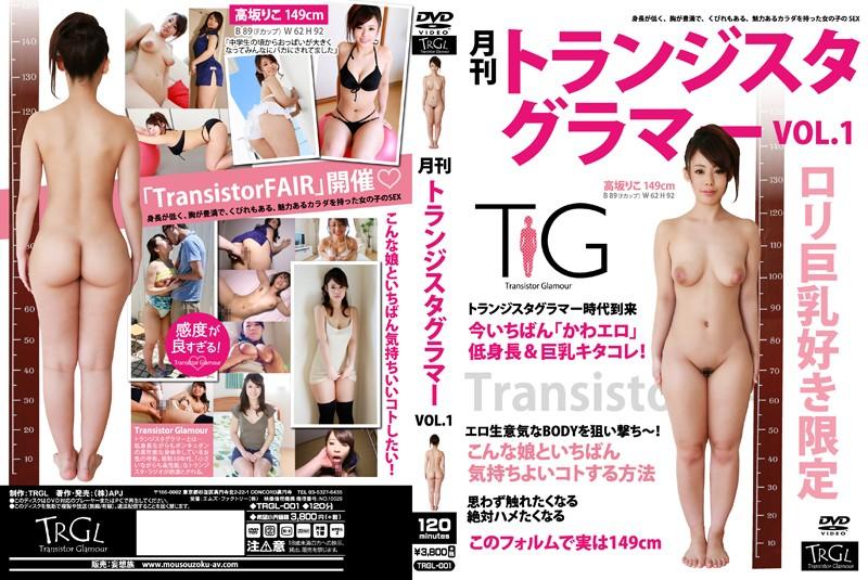 月刊トランジスタグラマー VOL.1