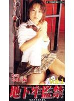 地下牢監禁 Vol.1 被害者 小山茜 ダウンロード