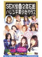 SEX学園2年E組 ハレンチ美少女クラス 担任 小川先生 ダウンロード