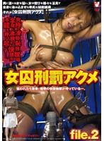 女囚刑罰アクメ file.2 ダウンロード