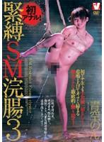 緊縛SM浣腸3 青空のん ダウンロード