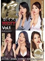 淫ボイスBEST Vol.1