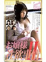 お嬢さま・性欲事情II ダウンロード