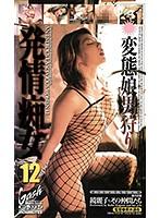 発情痴女 12 ダウンロード