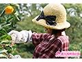 愛媛のエロみかん 騎乗位の神 みかん農家育ちのウブな19才がAVデビュー!