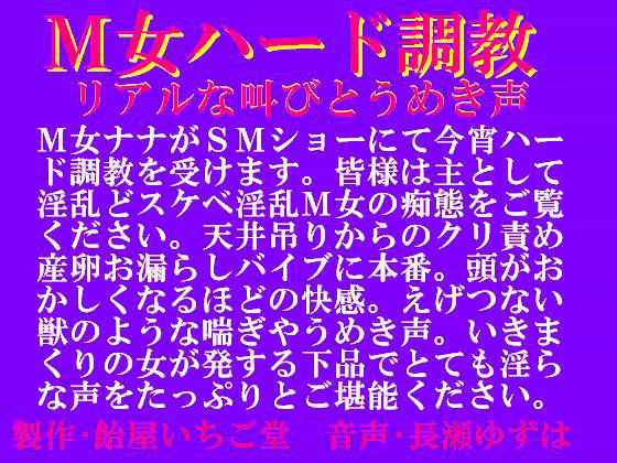 M女ハード調教・リアルな叫びとうめき声 mp3版
