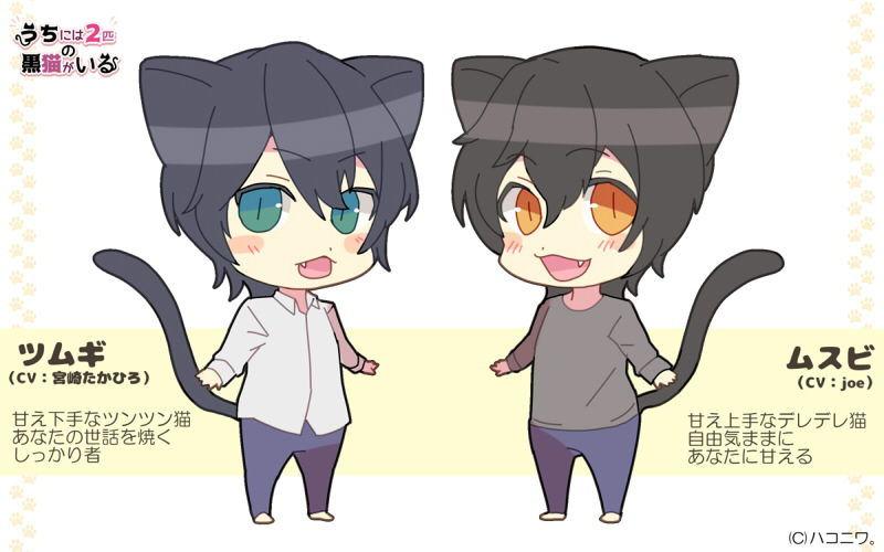 うちには2匹の黒猫がいる