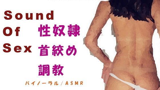 Sound Of Sex〜性奴●調教!勝手にイキまくるメス豚にお仕置(ご褒美?)首絞めファック!〜HQバイノーラル/ASMR/ノンフィクションエロボイス