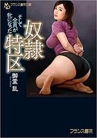 奴隷特区 (小説)