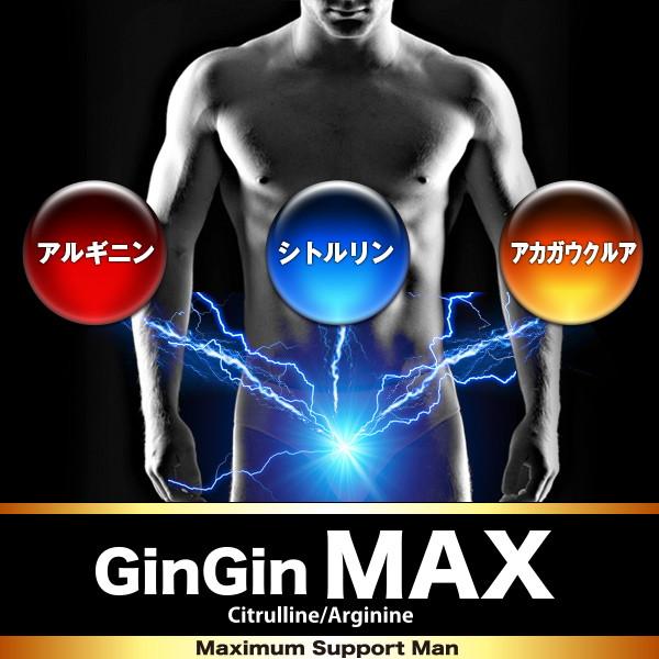 GINGIN MAX(ギンギンマックス)