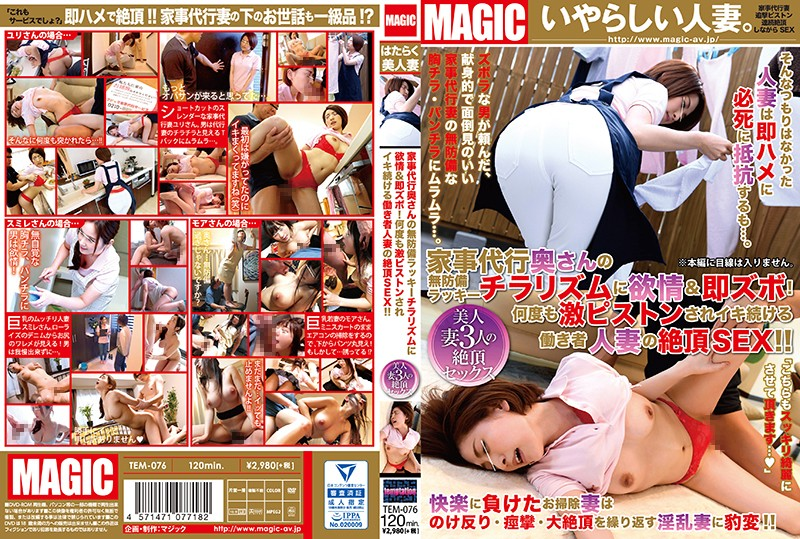 TEM-076 A Housecleaning Housewife