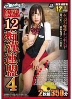 12痴漢連盟4(2枚組)