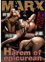 Harem of epicurean ~素人マゾ奴隷オークション~