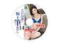 【数量限定】大日向遥の極上筆おろし 14 特典DVD付き  No.1