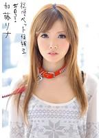 INU-003 Katou Rina - Candidates Pet Obedience 001