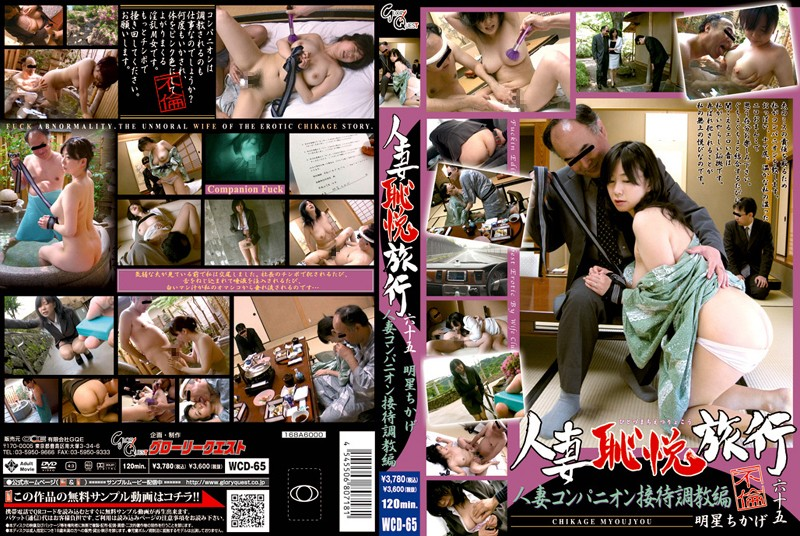 WCD-65 Torture Hen 65 To Travel Entertainment Companion Housewife Housewife Shame Yue (Glory Quest) 2008-07-17