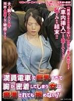 満員電車で巨乳すぎて胸が密着してしまう女は痴漢されても拒めない 7(ナチュラルハイ)【nhdta-481】