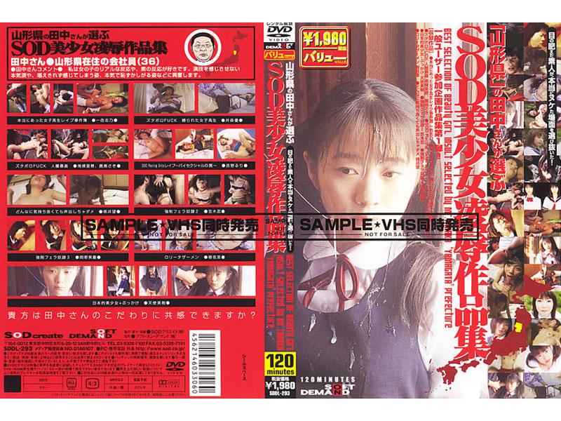山形県の田中さんが選ぶSOD美少女凌辱作品集 パッケージ