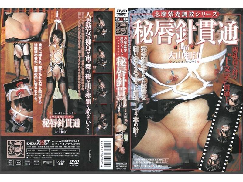 SRD-006 志摩紫光調教シリーズ 秘唇針貫通