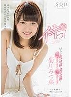 STAR-771 Kikukawa Mitsuha Tsu First Alive!