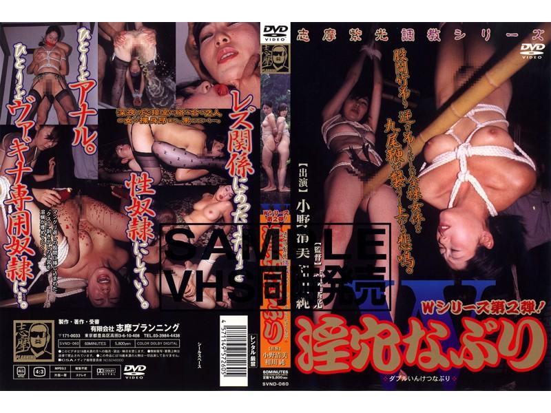 志摩紫光調教シリーズ W淫穴なぶり パッケージ