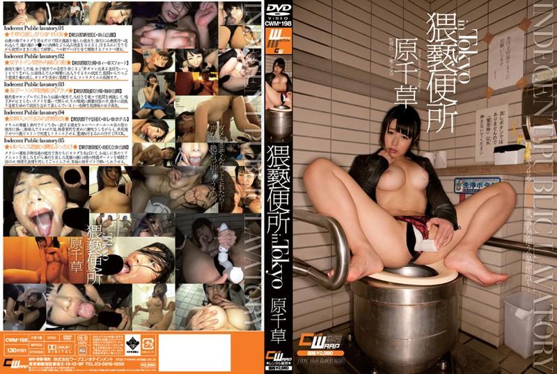 CWM-198 Obscenity toilet in Tokyo original Chigusa