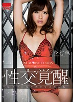 HODV-20843 I'm Sorry To Be A Pervert Too Imamura Maple Awakening Fuck