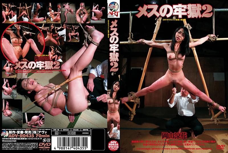 メスの牢獄 2 岡山涼花 (DOD)